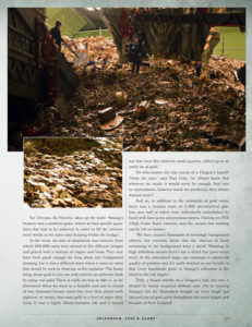 Hobbit: The Desolation of Smaug book